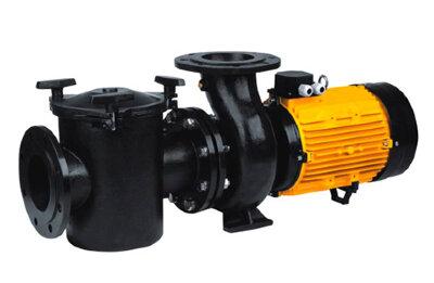 Насос CFRP с префильтром чугунный 165-195 м3/час, 380В, 11 кВт P-King