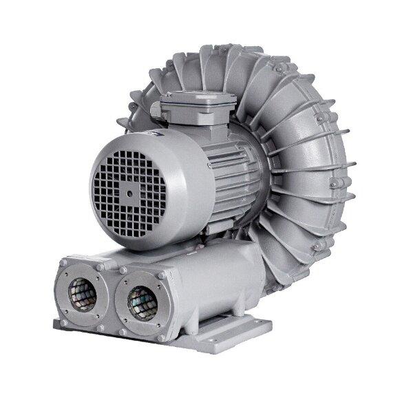 Компрессор AquaViva 050, 210 м3/ч, 1,5 кВ, 220В