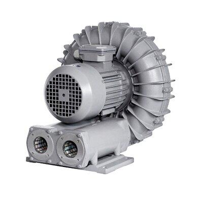 Компрессор AquaViva 060-2, 318 м3/ч, 3кВ, 380В